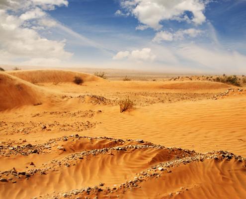Niewierność pustynia